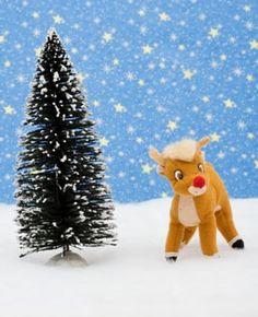 Reindeer Poo Fragrance Oil #candlemaking  #soapmaking
