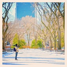 Photographing New York. Central Park, The Mall. #NYC photo #Padgram