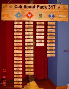 Pack 317 Advancement Board--this is the official P317 site and how they built/use the board!