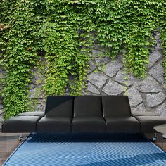 Green Wall x Wallpaper East Urban Home Fotos Wallpaper, Star Wallpaper, Embossed Wallpaper, Wallpaper Size, Wall Wallpaper, Outdoor Sofa, Outdoor Furniture, Outdoor Decor, Green Wall Decor