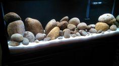 Optional purpose for river rocks**This is my tank. I finally got to paint the back glass black. 125 Gallon Aquarium, Aquarium Sand, Cichlid Aquarium, Nano Aquarium, Aquarium Design, Planted Aquarium, Aquascaping, Terrarium Tank, Goldfish Tank