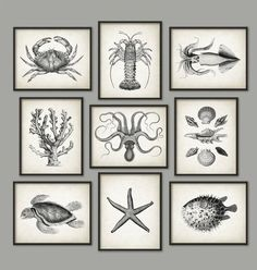 Whales And Octopus Bathroom Print Set of 4 by QuantumPrints | For ...