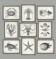 Marine Bathroom Print Set of 9 Marine Biology от QuantumPrints