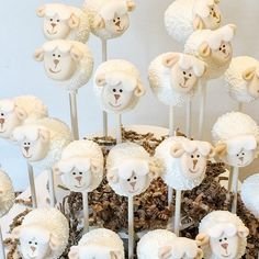 Baby lamb baby shower shower baptism favors by LittleCakeyPops - . - Baby lamb baby shower shower baptism favors by LittleCakeyPops - - Baby Shower Favors, Baby Shower Themes, Baby Shower Parties, Baby Shower Gifts, Shower Ideas, Girl Shower Cake, Baby Boy Shower, Shower Cakes, Baptism Themes