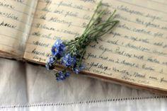 Love tiny flowers