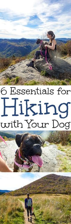 6 Essential Tips for Hiking with Dogs. -  including things to do and thoughts for keeping your pet safe. Includes trail training and backpacking for a fun and awesome time on local trails, National Parks in the U.S. States in fall, summer, winter and spring!  Gorgeous wanderlust photography! / Running in a Skirt AD
