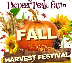 I had a great time at the Pioneer Peak Fall Festival last week! Palmer Alaska, Christmas Ornaments, Holiday Decor, Fall, Autumn, Fall Season, Christmas Jewelry, Christmas Decorations, Christmas Decor