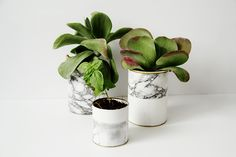 Francesca Stone from Fall for DIY turns empty cans into chic marble planters.