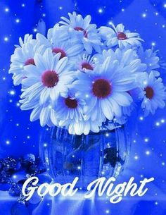 Good night beautiful Good Night Beautiful, Good Night I Love You, Good Night Wishes, Good Night Sweet Dreams, Good Night Image, Beautiful Gif, Good Morning Good Night, Beautiful Flowers Images, Flower Images