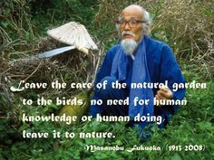 Let's look at just what is meant by permaculture, the history of this conservation movement, and meet some of its originators. Masanobu Fukuoka, Conservation Movement, What Is Meant, Natural Garden, Organic Farming, Sign Quotes, Go Green, Motivation Inspiration, Wise Words