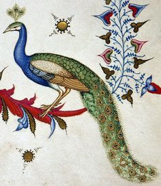 discarding images — peacock Breviary of Mary of Savoy, Lombardy ca....