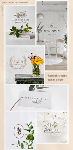 Download Botanical Elements Gold Combo Pack PNG
