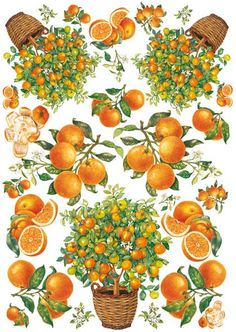 Papier do decoupage Calambour Easy Paper … Vintage Diy, Vintage Labels, Botanical Art, Botanical Illustration, Fruit Icons, Decoupage Printables, Nature Sketch, Orange Fruit, Flower Clipart