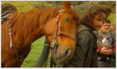 Awww! You can just tell how the horse feels about him. For a chance to meet him, vote for Viggo Mortensen at http://CelebCharityChallenge.org !