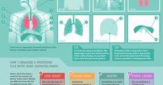 How to make an animated Infographic - um infográfico que funciona de guião à construção de infográficos com Gifs animados