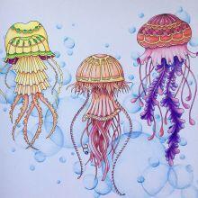 Galleries Johanna Basford Zentangle Coloring Doodles Zentangles Zen Tangles Patterns Doodle