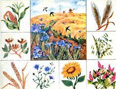 5 Preschool Education, Elementary Science, Preschool Worksheets, Science For Kids, Teaching Plants, Environmental Studies, Fruit Flowers, Infant Activities, Speech Therapy