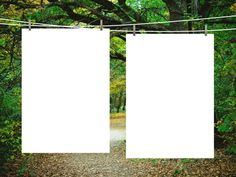 two blank frames against green forest background
