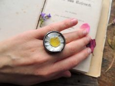 Terrarium dry flower ring select your size mini by MARIAELA