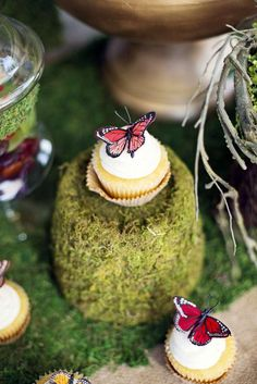 Woodland Butterfly Birthday Party cupcakes!  See more party planning ideas at CatchMyParty.com!