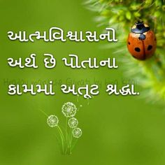Gujarati Quotes & gujarati shayari