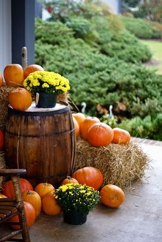 outside fall decor....Idea to note: could use a turned over 1/2 whiskey barrel to use as elevation for mums & pumkins