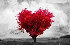 O amor faz o ser humano ser capaz de superar os seus limites.  Augusto Cury  Siga-me no facebook ..............Lucia Neuen Neuen