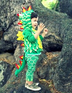 Costume dragon- Carnaval
