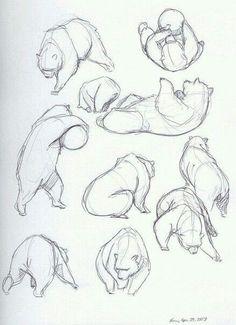 40 Free & Easy Animal Sketch Drawing Information & Ideas 40 Free & Easy Animal Sketch Drawing Ideas & Inspiration - Brighter Craft. Drawing Studies, Art Studies, Figure Drawing, Drawing Reference, Anatomy Reference, Animal Drawings, Art Drawings, Animal Sketches Easy, Drawing Art