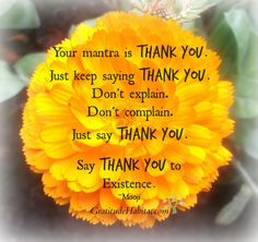 Say Thank You to Existence. Visit us to: www.GratitudeHabitat.com #thank you #inspirational-quote #gratitude #Mooji