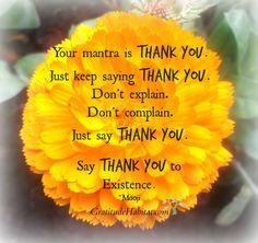 Say Thank You to Existence. Visit us to: www.GratitudeHabitat.com #thank you #inspirational-quote #gratitude #Mooji