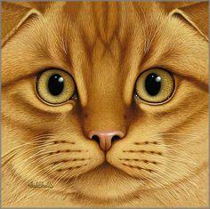 Il mondo di Mary Antony: I gatti di Braldt Bralds