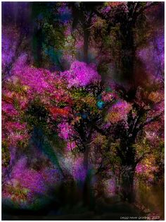 Digital Art by Peggi Meyer Graminski  Enchanted Places 2  Prints on sale