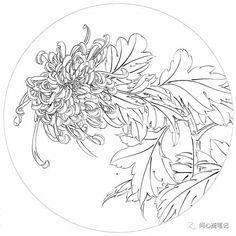 Хризантема Drawing Sketches, Art Drawings, Graphic Illustration, Illustrations, Oriental Print, Peacock Art, China Art, Irezumi, Chinese Painting