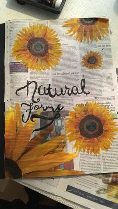 Natural forms - Title Page: let's get started! - my own work