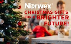 12 Days of Norwex Christmas: The Little Helper