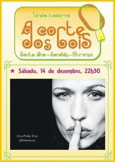 Iria Peña Trio @ A Corte dos Bois - Sandiás (Ourense) - música concerto concierto