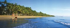 Live in Port Douglas for 4 Months of Year 4 Months, My Dream, Dreams, Live, Beach, Water, Outdoor Decor, Gripe Water, The Beach