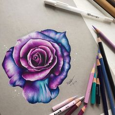 "1,306 Likes, 127 Comments - ✿ drawingss ✿ (@keelee.drawss) on Instagram: ""•Hello Everyone! • here's this pink/purple/blue rose drawing i did! this took a lot longer than i…"""