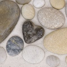 hearts in nature rocks - adventure journal