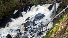 Korkeakoski on komeimmillaan Waterfall, Audio, Outdoor, Outdoors, Waterfalls, Outdoor Games, The Great Outdoors