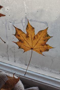 Leaf Tattoos, Autumn Leaves, Abstract, Artwork, Painting, Instagram, Summary, Work Of Art, Fall Leaves