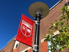 Diversity Enriches Rutgers Online Master's in Human Resource Management Program | Rutgers School of Management and Labor Relations Hr Management, Resource Management, Independent Student, Faculty And Staff, Equal Opportunity, Certificate Programs, Online Programs