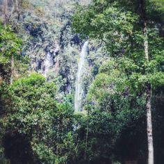Позже мы перестали их считать... В горах Колумбии есть одна особенность - очень много воды. Например в стране жизненно-важная артерия соединяющая центр с двумя побережьями которую в народе называют la linea - линия имеет всего лишь две полосы - в одну и противоположную сторону. Линия вьется узкой змейкой между гор тысячью поворотов потому постоянно загружена и в пробках. Альтернативную трассу строят больше десяти лет множество пролетов высоких акведуков уже почти готовы но сложность…