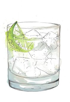 de winton paper co cocktail illustration gin and tonic