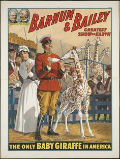 Barnum & Bailey greatest show on earth : The only baby giraffe in America by Boston Public Library, via Flickr