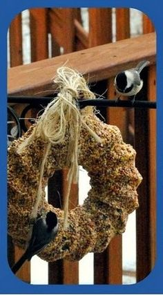 Homemade Suet for feathered friends