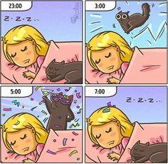 Cómic gato en casa madrugada