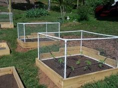 Basic fence box...Pat did this today but used zip ties on the chicken wire instead and it looks great. Will lift off so I can harvest my veggies later on and will keep the squirrels and rabbits out for sure! by Amy Claire