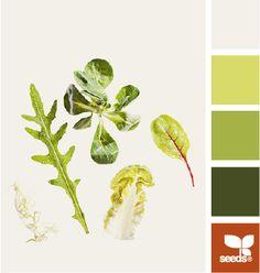 Leafy Color